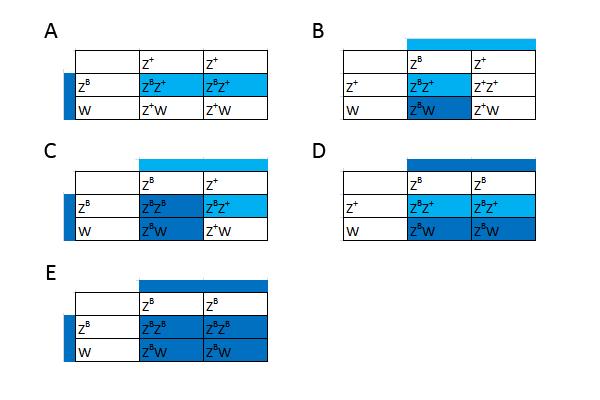 dominante og recessive gener eksempler